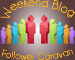 GEORYL Joins The Weekend Blog Follower Caravan