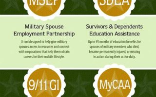 An Infographic on Military Spouses