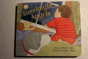 goodnight angel book cover