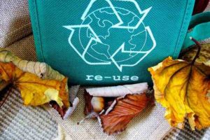 Going Green: The Benefits of Reusable Bags